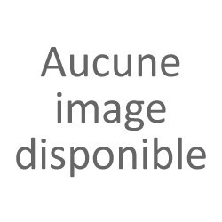 Polo femme Handball 2017